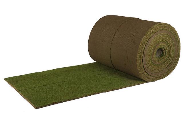 Bentgrass Grass Turf Green Lawn Install